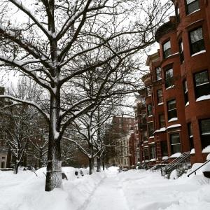 Winter Storm 1
