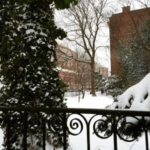 Winter Storm 3