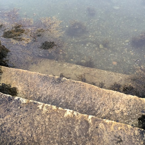 Steps to the Sea 2